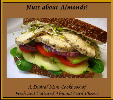 nuts-about-almonds-cookbook-by-the-gentle-chef-big